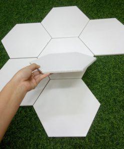 Gạch 20x30 lục giác ốp tường màu trắng
