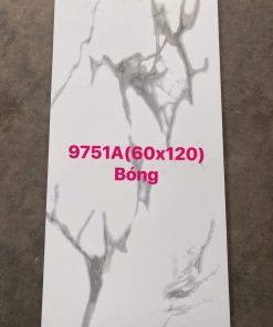 Gạch cao cấp giá rẻ 60x120